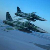 Caças F-5M sobrevoando o Sul do Brasil, em 2006. O Caça F-5M será até 2020 a principal força de interceptação do Brasil. Foto - Prof. Rudnei
