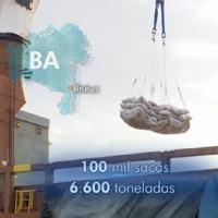 Print da matéria do Jornal Nacional tratando da retomada da exportação de amêndoa de Cacau após 20 anos. A mais importante ação de Agroterrorismo feita no Brasil.