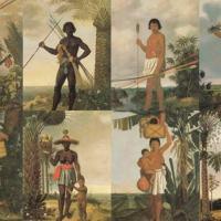 Se o Brasil comemora hoje (22Abril) 518 anos do Descobrimento, o brasileiro tem menos de dois séculos. É uma invenção inspirada na Inconfidência Mineira pelo iluminismo do santista José Bonifácio de Andrade