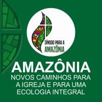 Denis Lerrer Rosenfield - Sínodo da Amazônia