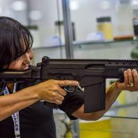 Sergio Netto - Armas de fogo – expectativa de modificações
