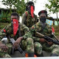 Membros do Exército da Libertação Nacional (ELN) na floresta de Chocó em 23 de maio de 2019