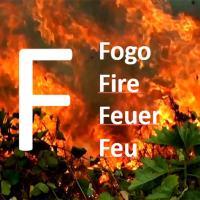 Fogo-Fire-Feuer-Feu: Lorenzo Carrasco: Amazon, after Greenland?