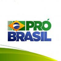 Pedro Pinho - A Necessidade do PRÓ-BRASIL