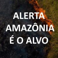 Importante texto do Alerta Ambiental sobre a mobilização internacional com o foco na Amazônia. O real objetivo da atual crise política brasileira.