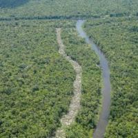 Em mensagem ao mercado externo, Mourão diz que compromisso brasileiro com a Amazônia é 'inabalável