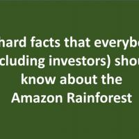 Geraldo Lino - 10 hard facts that everybody (including investors) should know about the Amazon Rainforest