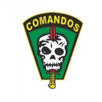 Cel Fernando Montenegro - 1ª Mulher no Processo Seletivo do Curso de Comandos do Exército Brasileiro