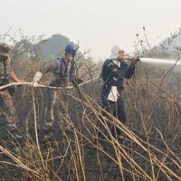 Militares da Marinha, Corpo de Bombeiros e Polícia Militar Ambiental atuaram em conjunto