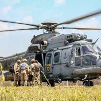 Monitoramento se dá por via satélite, terrestre, drone e sobrevoos de helicópteros