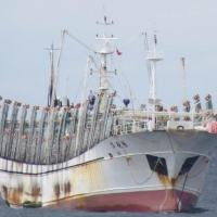 Pesqueiro chinês Hua Li 8, típico navio que integra as frotas pesqueiras chinesas no Pacífico e América Latina.