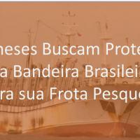 Exclusivo – Chineses oferecem Polo Pesqueiro no Sul do Brasil. Oportunidade Comercial ou Armadilha Geopolítica?
