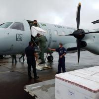 Forças Armadas apoiam Ministério da Saúde na vacinação da comunidade indígena Umariaçu I, no Amazonas