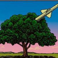 O futuro das Forças Armadas Brasileiras será a função de Guarda Florestal?