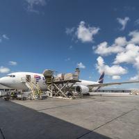 A escolha do Boeing 767-300BCF tem como critério a flexibilidade do modelo e os seus altos níveis de eficiência operacional