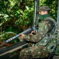 O nome da Operação homenageia a árvore conhecida como rainha da Amazônia