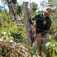 A Operação Samaúma, de Garantia da Lei e da Ordem, ocorre em terras indígenas